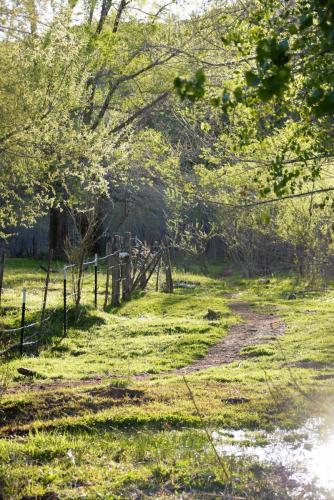 Photo of Gunlock field